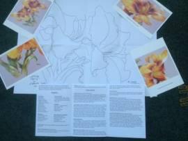 01. Strahlende Taglilien (Kathwren Jenkins) Deutsch - Bild vergrößern